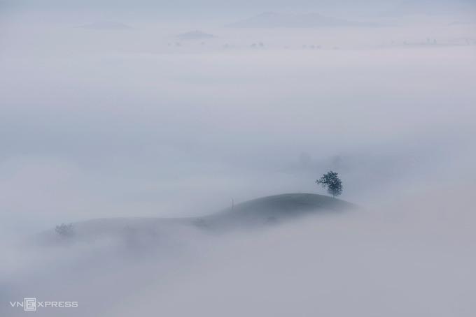"""""""Lúc trời lập đông, những làn mây ùa về hòa quyện với sương che kín cả lối đi và bao phủ thung lũng chè. Tôi thật sự ấn tượng trước khung cảnh này"""", nhiếp ảnh gia Phạm Hoàng Cương (Hà Nội), chia sẻ. Anh Cương từng nhiều lần tới Long Cốc săn ảnh sương vờn mây trên những """"ốc đảo chè""""."""