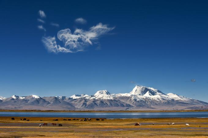Hồ Manasarovar  Hồ nước thiêng liêng nhất với người Tây Tạng là Manasarovar, nằm ở độ cao 4.590 m, thuộc vùng viễn tây gần núi Kailash. Đây là một trong những hồ nước ngọt cao nhất hành tinh, với tầm nhìn bao quát dãy Himalaya ở phía nam, trong đó có đỉnh Mandhata hùng vĩ cao 7.694 m. Ảnh: The Land Of Snows.