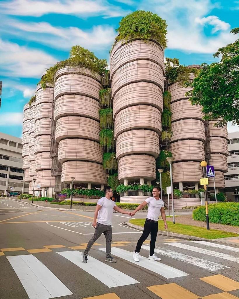 Khi đến tham quan The Hive, du khách có thể thoải mái chụp hình chẹck-in. Tuy nhiên, bạn nên chú ý giữ trật tự khi vào tham quan khuôn viên bên trong tòa nhà vì đây là khu vực tự học của sinh viên Đại học Công nghệ Nanyang. Khoảng thời gian lý tưởng nhất để ghé thăm nơi đây rơi vào khoảng từ 11-14h. Ảnh: Hsushihhan, hafizbinshariff.