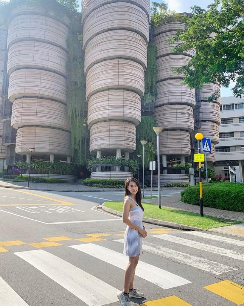 Từ trung tâm Singapore, bạn có thể đến đây bằng một số loại phương tiện công cộng như xe buýt hoặc tàu điện. Giá vé tàu điện một chiều từ khoảng 2,5 SGD (hơn 40.000 đồng) cho 45 phút di chuyển từ trung tâm thành phố đến ga Pioneer. Ảnh: Seattlesquirrel, sawarosice.