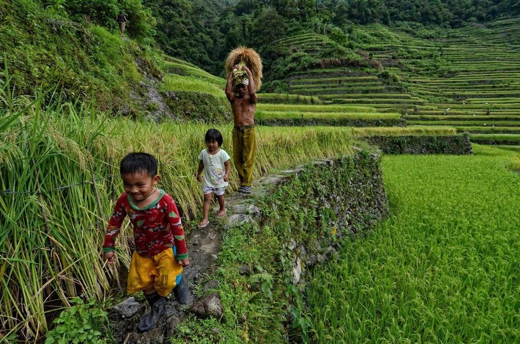 trekking-san-may-va-4-trai-nghiem-hap-dan-chi-co-o-philippines-ivivu-14