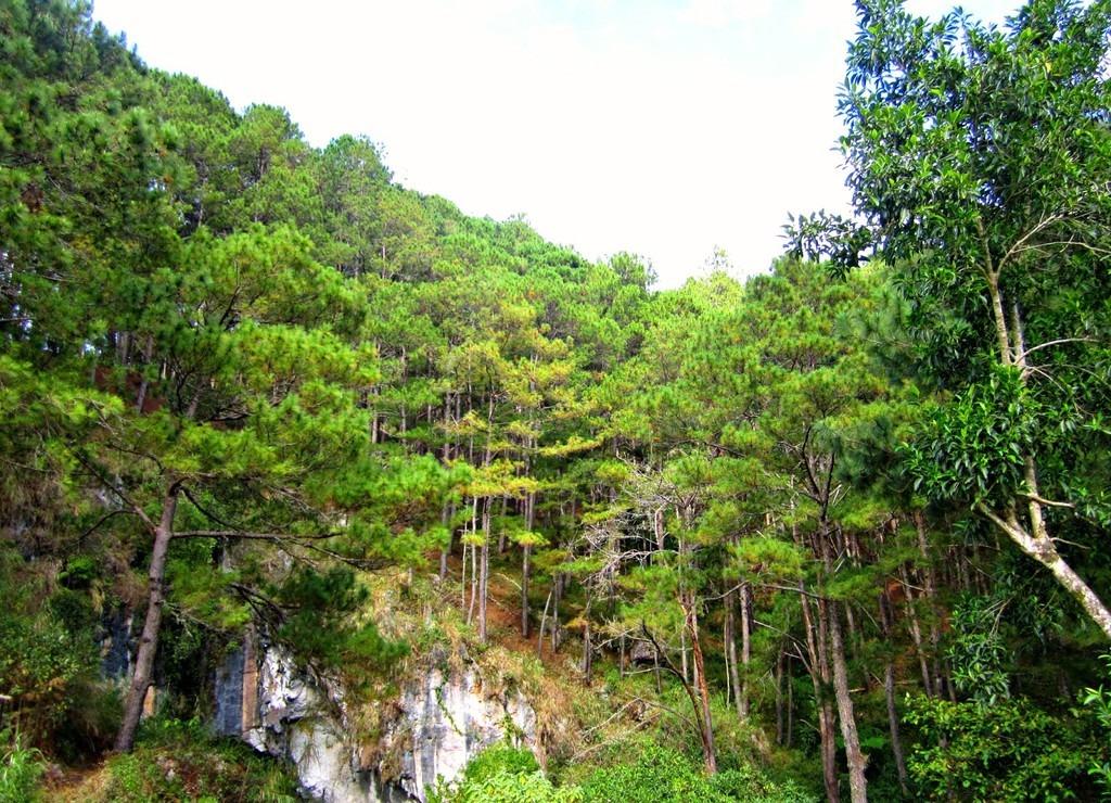 trekking-san-may-va-4-trai-nghiem-hap-dan-chi-co-o-philippines-ivivu-3