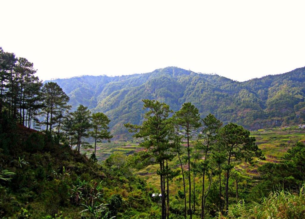 trekking-san-may-va-4-trai-nghiem-hap-dan-chi-co-o-philippines-ivivu-4