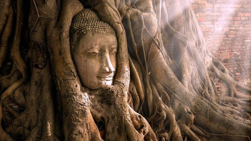 Mahatat được xem là ngôi chùa có vị trí khá quan trọng và là di tích trung tâm của Hoàng Cung Ayutthaya. Điểm đến được nhiều du khách lựa chọn khi ghé Thái Lan bởi hình ảnh đầu của một pho tượng Phật bằng đá ẩn mình trong rễ cây sung cổ thụ hùng vĩ. Ảnh: RVC Travel.