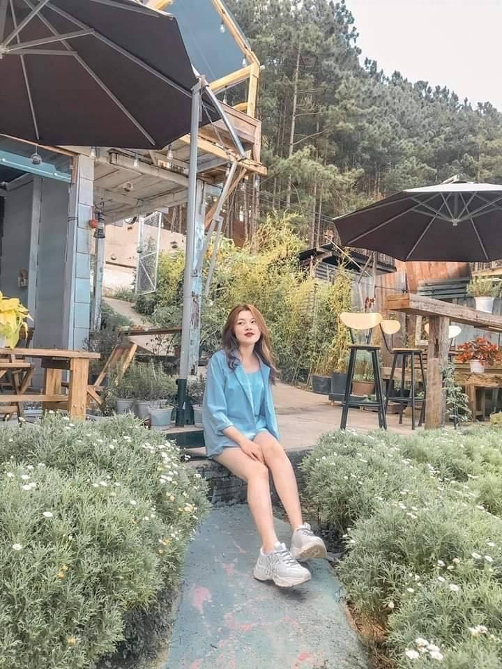 Update ngay top những quán coffee Đà Lạt tràn ngập cúc họa mi siêu lãng mạn - ảnh 2