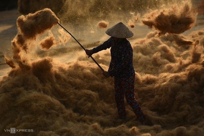 """Tác phẩm """"Phơi sợi dừa"""" của Đặng Châu Anh Phong (Huế), giải khuyến khích."""