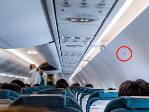 Hình tam giác đen trên thân máy bay ít được hành khách chú ý. Ảnh: Shutterstock/ leungchopan.