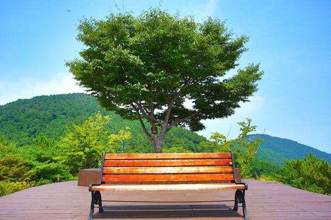 Ra ngoại ô thành phố, công viên Dara, du khách được tận hưởng cảnh non nước thanh bình. Từ lâu đây là điểm lý tưởng để chụp ảnh mặt trăng, nhưng nhiều khách tham quan cũng ghé để ngắm bình minh. Ảnh: Visit Korea.