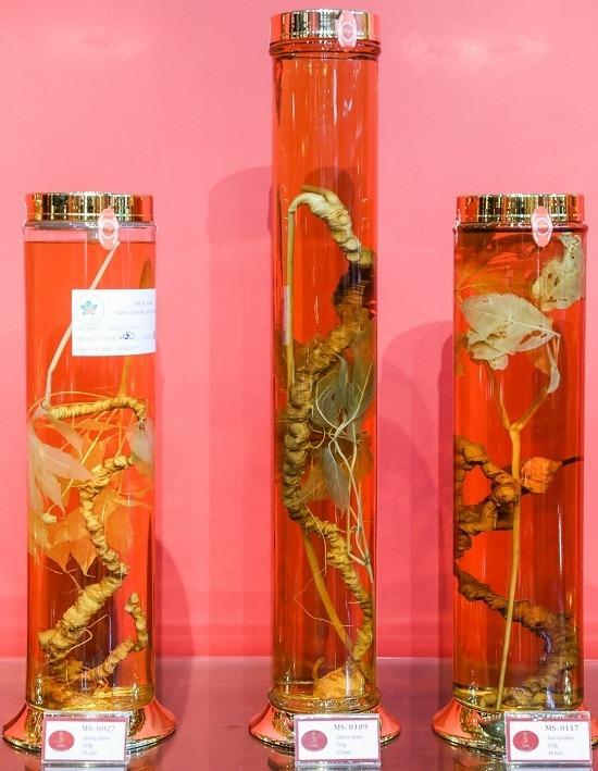 Ba củ sâm có tuổi đời hơn 50 năm được trưng bày. Củ sâm ở giữa 65 năm, có tuổi đời lâu nhất ở đây.  Những củ sâm có nhiều hình dáng, kích thước khác nhau. Củ nặng và lâu năm càng tăng giá trị. Mỗi mấu trên củ sâm tương đương với một năm tuổi.