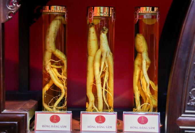 """Những củ hồng đẳng được trồng tại Đà Lạt là một loại mang tên """"sâm"""" được trưng bày."""