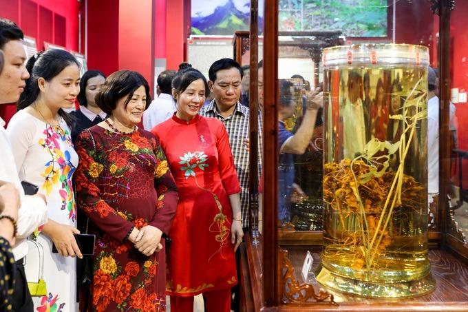 Sâm Ngọc Linh là bảo tàng tư nhân thứ tư ở TP HCM, mở cửa các ngày trong tuần trừ thứ ba.
