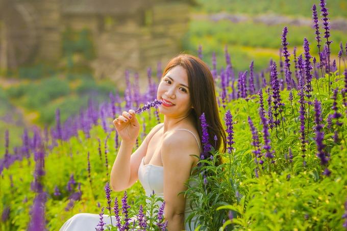 """""""Nhìn ảnh thoáng qua, mình nghĩ cánh đồng hoa này ở Đà Lạt. Nhưng không ngờ đây là một cánh đồng hoa ở ngay Hà Nội"""", một du khách cho biết. Đến đây, du khách còn được thưởng thức view sông Hồng thoáng mát.  Giá vé vào vườn là 70.000 đồng. Ngoài nữ hoàng xanh, khu vườn còn trồng nhiều loài hoa khác theo mùa như cẩm tú cầu, hoa cánh bướm... Các đôi chụp ảnh cưới sẽ tính thêm phụ phí."""