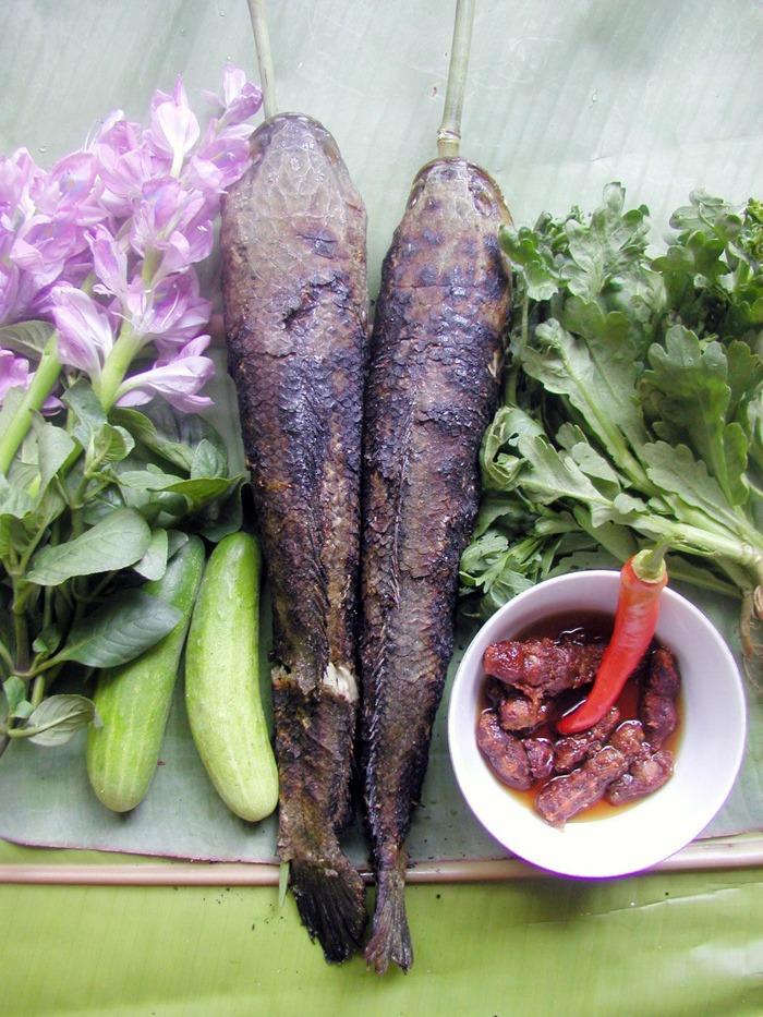 Cá lóc đồng nướng trui - một trong những món ăn dân dã của người dân miền Tây, đặc biệt ở Hậu Giang. Ảnh: Quỳnh Biển.