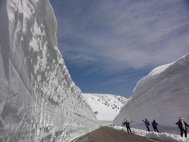 Tản bộ dọc theo hành lang tuyết: Tuyết rơi nhiều ở Tohoku đến nỗi bạn có thể nhìn thấy hành lang tuyết vào cả tháng 4-5. Hành lang này được hình thành khi những chiếc xe ủi dọn đi một lớp tuyết dày và để lại phần tuyết ở hai bên, tạo thành bức tường. Con đường Hachimantai Aspite sẽ được mở cổng tham quan từ giữa tháng 4 đến giữa tháng 5 để bạn chiêm ngưỡng hành lang tuyết sau khi ghé thăm các điểm ngắm sakura gần đó. Du khách có thể đi xe buýt 2 tiếng từ ga JR Morioka (tuyến Tohoku Shinkansen / Akita Shinkansen).