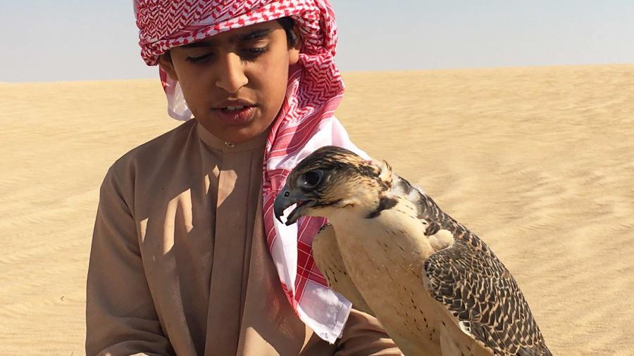 Săn bắt bằng chim ưng trên sa mạc là một phần di sản của người Bedouin ở các tiểu vương quốc Arab Thống nhất (UAE). Di sản này vẫn còn tồn tại đến ngày nay.
