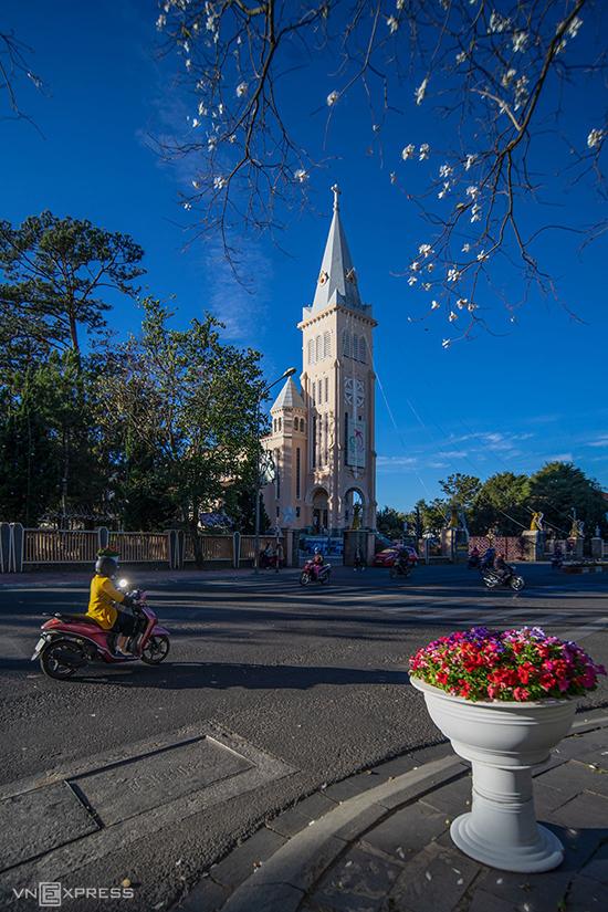 Nhành ban trắng tô điểm cho khung cảnh nhà thờ Con Gà, một trong những công trình kiến trúc cổ xây dựng thời Pháp thuộc, nằm trên đường Trần Phú.