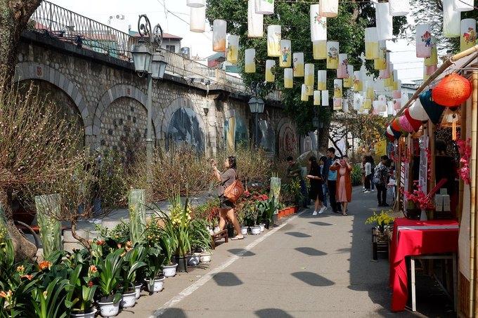 Phố bích họa Phùng Hưng (đoạn từ Hàng Cót tới Lê Văn Linh) là một trong những tuyến phố cổ tổ chức chợ hoa, mừng Tết Canh Tý 2020. Từ ngày 9/1, khu phố có thêm nhiều điểm bán hoa đào, quất và các loại cây cảnh trang trí, thu hút nhiều du khách tham quan. Các phương tiện không được lưu thông trên con đường này, nên khách có thể gửi xe ở bên ngoài, với giá từ 15.000 đồng một chiếc.