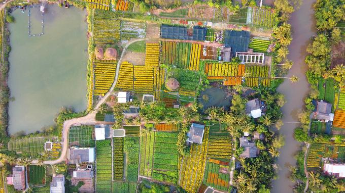 Khu đất 3 ha nằm trên nền lò gạch cũ 100 năm tuổi, được nhiều người dân thuê lại trồng hoa Tết.