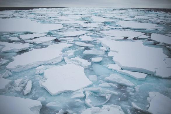"""Những tảng băng trôi, một trong những """"đặc sản"""" du lịch của Hokkaido, đang dần ít đi trong những năm gần đây - Ảnh: Greenpeace"""