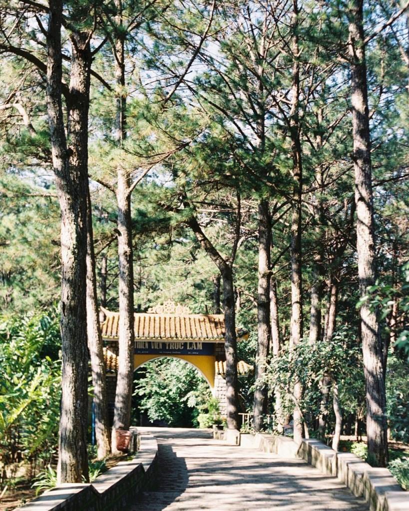 du-xuan-dau-nam-tai-nhung-ngoi-chua-dep-linh-thieng-o-da-lat-ivivu-7