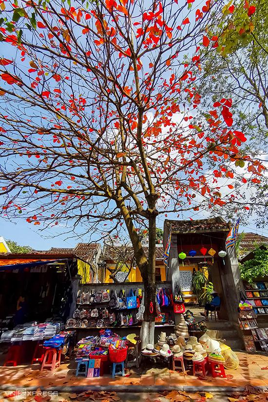 Một cửa hàng bán đồ lưu niệm túi xách và nón trên đường Nguyễn Thị Minh Khai. Hội An được UNESCO công nhận là Di sản Văn hóa Thế giới vào năm 1999. Đô thị cổ này cũng được tạp chí Travel and Leisure bình chọn đứng đầu 15 thành phố du lịch tốt nhất thế giới năm 2019.