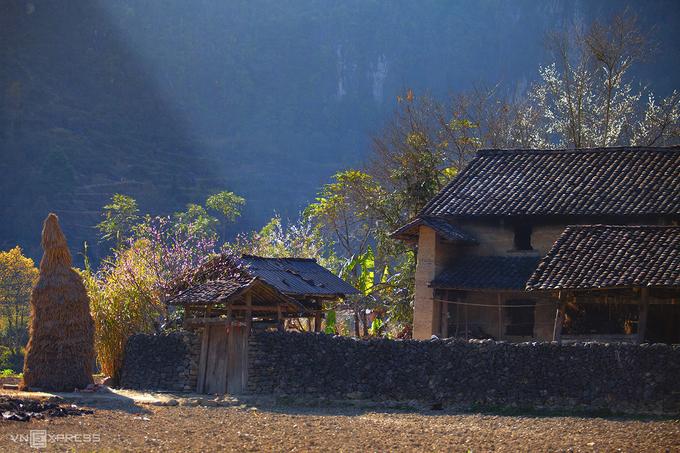 Chiều xuân trên Phố Cáo với bờ rào đá bao quanh căn nhà cổ, bên cạnh là ụ rơm và hoa mận, đào.