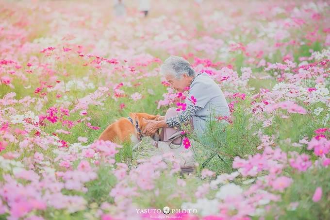 Nhiếp ảnh gia người Nhật Yasuto gây xúc động với người xem khi đăng tải bộ ảnh bà ngoại và chú cún cưng của mình. Anh đã đưa người bà đáng kính của mình tới thăm những phong cảnh đẹp nhất ở xứ sở mặt trời mọc vào bốn mùa trong năm.