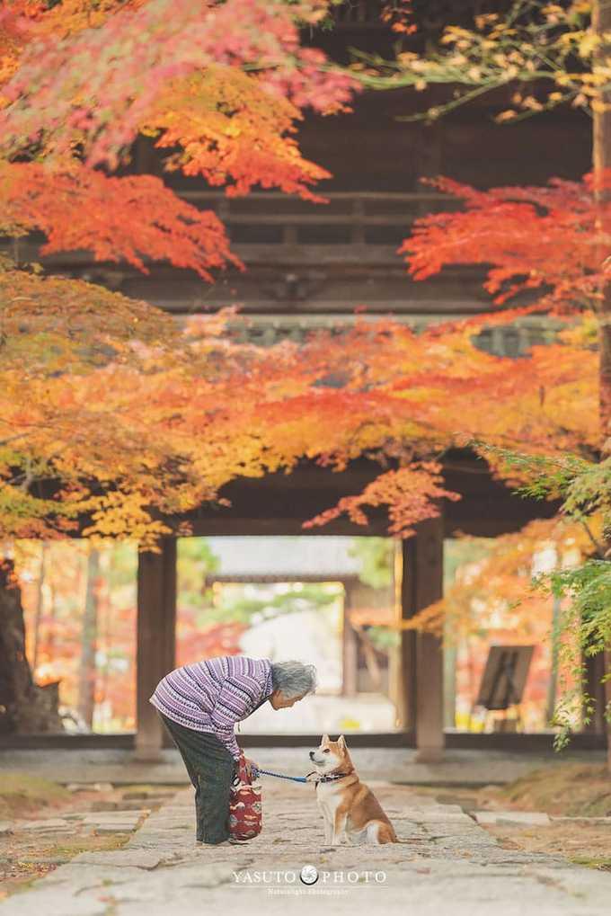 Bộ ảnh được thực hiện suốt một năm, ở rất nhiều địa điểm nổi tiếng ở Nhật Bản, đặc biệt là những nơi có các công viên hoa đẹp.