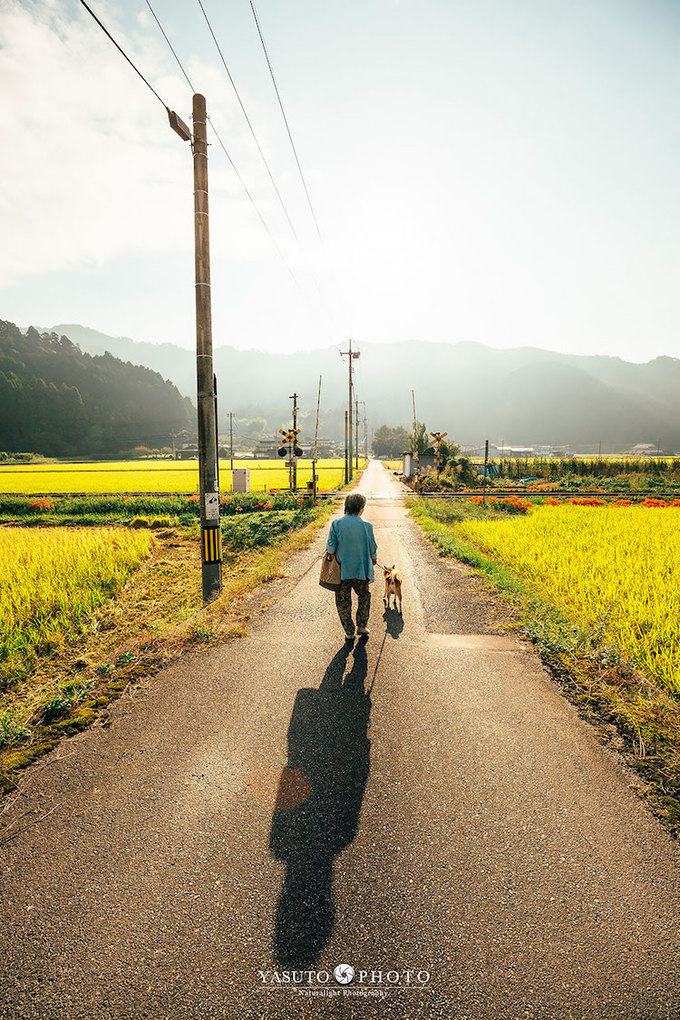 Yasuto muốn đưa bà đi ngắm những cảnh sắc đẹp nhất khi bà còn đủ sức khỏe.