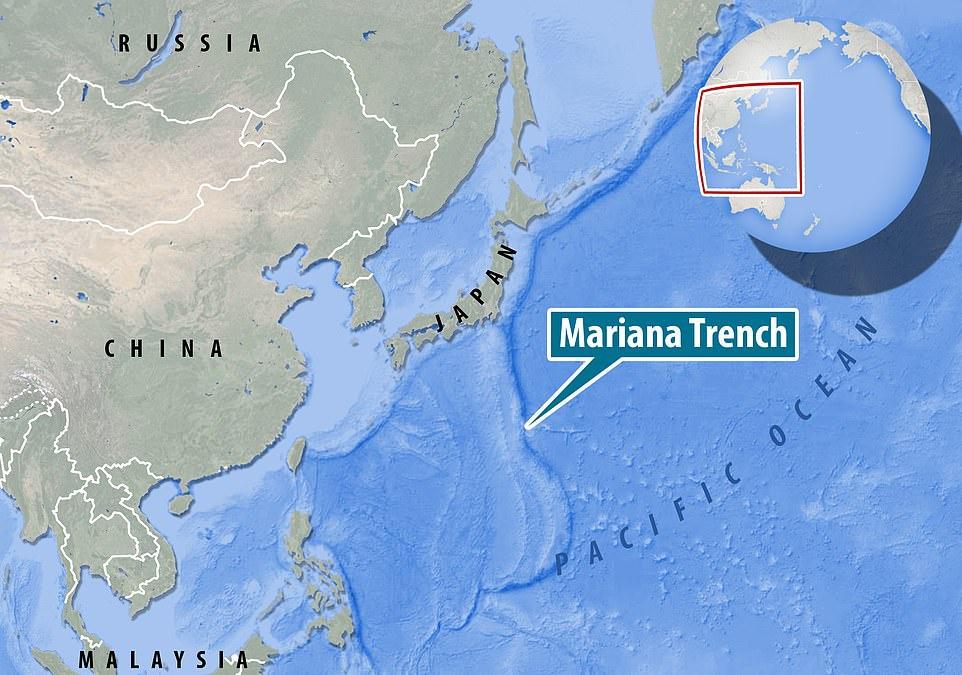 Mariana được biết đến là rãnh đại dương sâu nhất, sở hữu điểm sâu nhất trong lớp vỏ Trái Đất. Nơi đây thuộc khu vực tây bắc Thái Bình Dương, phía đông quần đảo Mariana. Độ sâu tối đa của rãnh là 11.034 m dưới mực nước biển theo phép đo gần đây nhất.