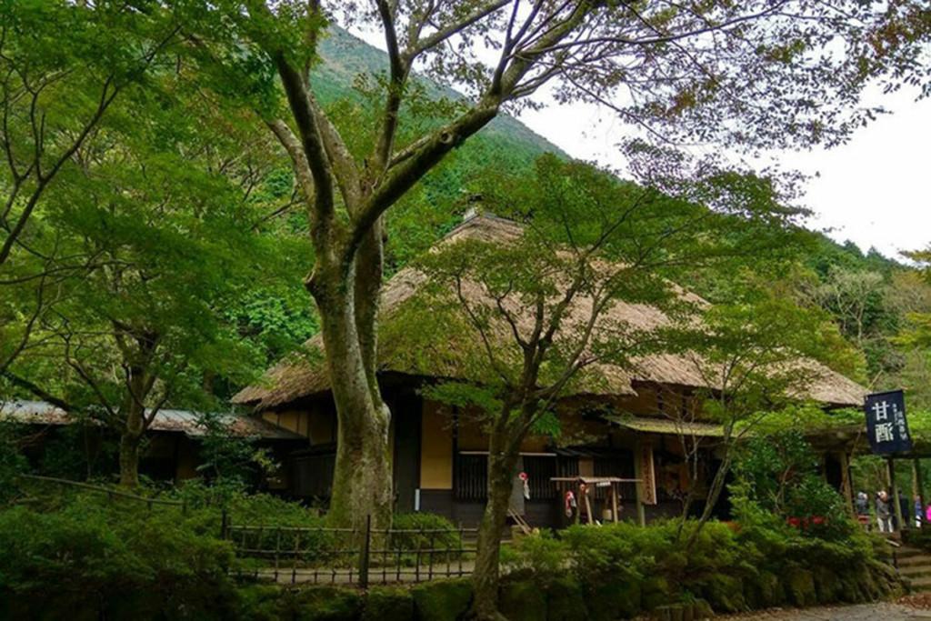 Quán trà Amazake Chaya được điều hành bởi 13 thế hệ trong một gia đình. Ảnh: Greater Tokyo.