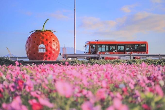 Tuy nhiên, Konagai không phải là nơi tiện lợi dành cho du khách nếu bạn không thuê xe riêng nên không nhiều du khách nước ngoài ghé thăm. Thị trấn này hầu như không phát triển các dịch vụ du lịch. Không khí khá buồn và hoang vắng vì dân cư quá thưa thớt. Do đó, dù có tuyến xe buýt, chúng không thường xuyên chạy ngang qua các trạm xe buýt trái cây. Hầu hết nhà hàng và trạm xăng ở đây đều đóng cửa khá sớm. Ảnh _sorakumo.
