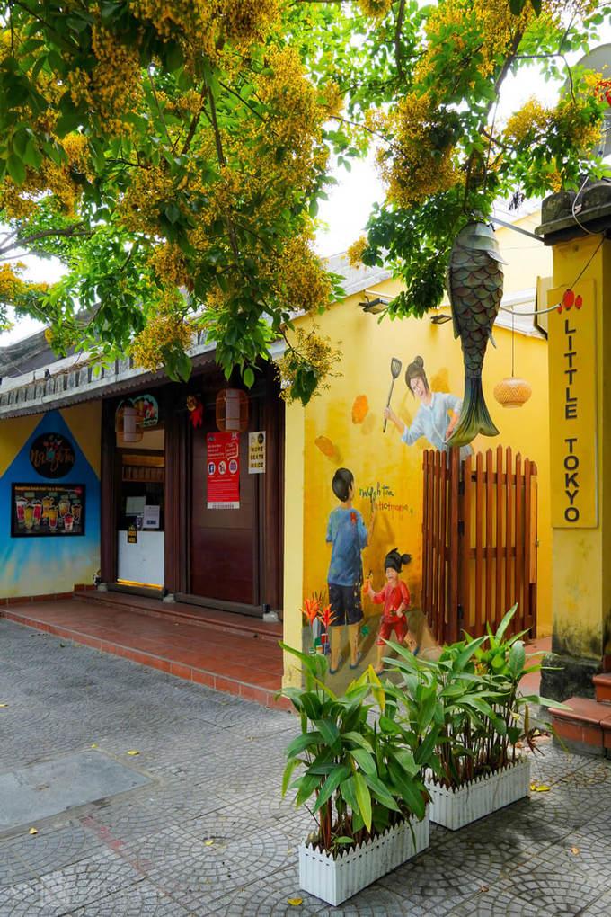 Cây sưa nở rộ hoa phía trước một góc nhà hàng trên đường Phan Chu Trinh. Do lo ngại dịch bệnh, các hàng quán ở Hội An thời gian này cũng vắng khách hơn, một số địa điểm đã đóng cửa.