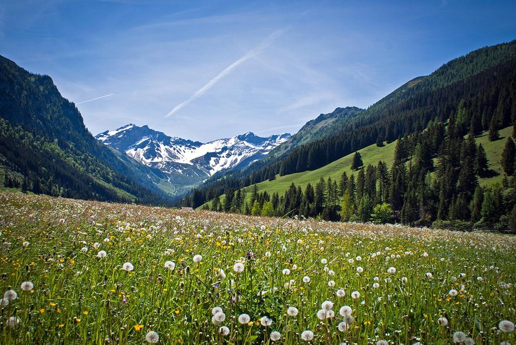 Bạn có thể tới đây leo núi, trượt tuyết, hay đơn giản là tản bộ trên những sườn núi, thăm thú các lâu đài cổ kính và thưởng thức đặc sản địa phương. Ảnh: Lonely Planet.