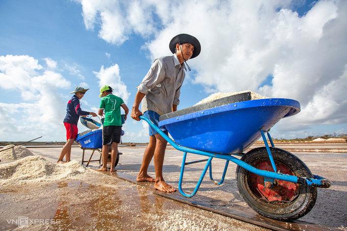 Diêm dân dùng xe đẩy vận chuyển muối đến nơi tập kết.