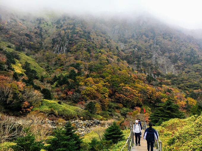 Có 5 cung đường leo núi Hallasan nhưng chỉ có 2 đường dẫn lên tới đỉnh núi. Mỗi cung đường lại sở hữu một cảnh quan riêng, cung ngắn nhất khoảng hơn 3 km, cung dài nhất gần 10 km. Người Hàn vốn yêu thích hoạt động leo núi, thường xuyên rèn luyện nên tất cả các cung đường đều có người lựa chọn.