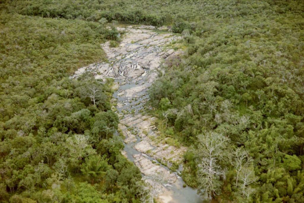 Bức ảnh thác Cam Ly được chụp từ máy bay vào năm 1969. Nằm cách chợ Đà Lạt khoảng 2 km, thác Cam Ly nổi tiếng với những câu chuyện huyền thoại, thu hút nhiều du khách ghé thăm. Ảnh: Tom Petersen.