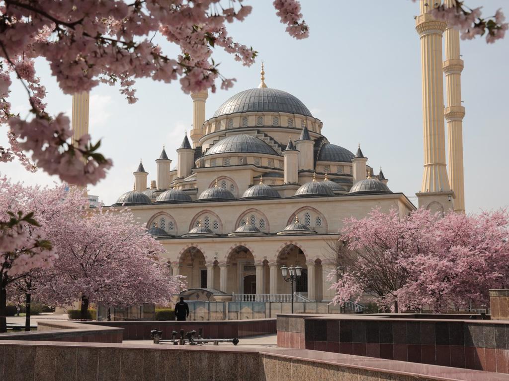 Dịch bệnh chưa giảm bớt, hoa anh đào nở rộ trong bầu không khí tĩnh lặng là điểm chung tại nhiều quốc gia. Những gốc hoa khoe sắc bên ngoài nhà thờ Hồi giáo Akhmad Kadyrov (Nga) nhưng không có khách tham quan. Ảnh: Getty.