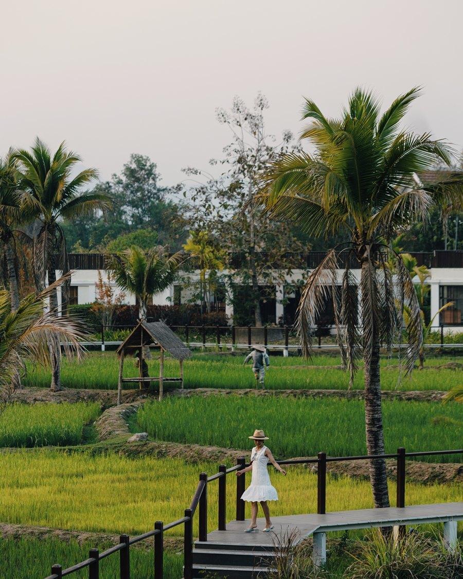 Những thửa ruộng xanh mướt là một điểm cộng cho nơi này. Du khách có thể chiêm ngưỡng vẻ đẹp hoàng hôn từ phòng mình.  Yến cho biết, cô cùng chồng đến Luang Prabang vào cuối tháng 2 nên khí hậu lúc này rất mát mẻ, dễ chịu giống như ở Đà Lạt, sáng và tối nhiệt độ có lúc xuống tầm 17 độ, giữa trưa gần 30 độ.