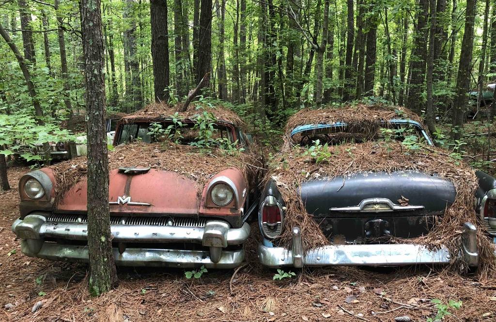 """Old Car City (Mỹ): Nằm cách Atlanta hơn 80 km, ẩn mình trong rừng rậm ở bang Georgia, bãi xe ôtô phế thải Old Car City (thành phố xe cũ) là điểm check-in hút khách. Biển báo """"Rừng phế thải 80 năm tuổi lâu đời nhất thế giới"""" chào đón bạn đến với bãi xe độc đáo. Old Car City có hơn 4.000 chiếc xe cổ. Hầu hết chúng đều sản xuất từ năm 1972 hoặc trước đó, nằm rải rác trên gần 140.000 m2 rừng. Ảnh: Abandoned explorers."""