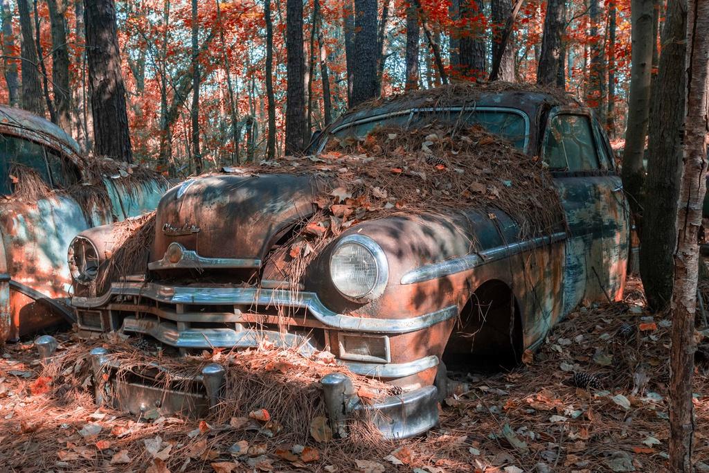 Từ việc thu gom phế thải ôtô kinh doanh, Dean Lewis biến những chiếc xe cũ thành vật trưng bày giữa rừng rậm, bán vé cho khách tham quan. Những thương hiệu xe hơi đình đám như Ford, Cadillac và thậm chí là xe tải Mack 1941 hiếm có cũng phủ đầy rêu phong ở nơi đây. Mỗi chiếc xe ở Old Car City đều có giá trị hoài cổ và ngày càng nhiều đến mức Dean phải mua thêm đất để chứa chúng. Ảnh: Abandoned explorers.