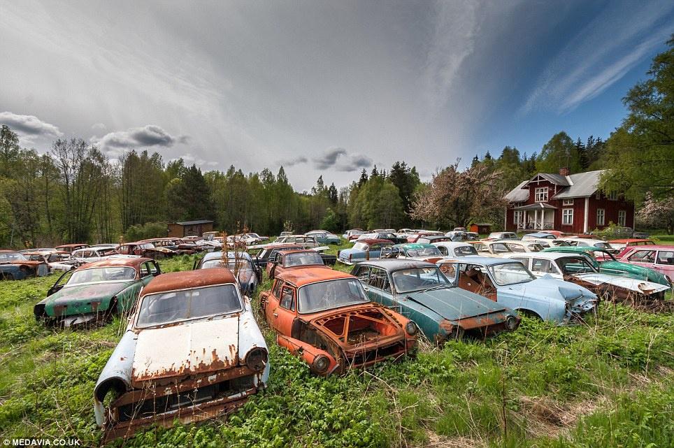 Nghĩa địa xe hơi quận Bastnas (Thụy Điển): Bên trong khu rừng ở miền Nam Thụy Điển có 1.000 chiếc ôtô cổ, độc đáo. Hai anh em người Thụy Điển đã thành lập bãi phế liệu vào những năm 1950 để cất giữ ôtô bị quân nhân bỏ rơi trong Thế chiến II. Họ thậm chí xây dựng một ngôi nhà gỗ bên trong bãi xe. Đến năm 1980, những chiếc xe bị bỏ lại trong khu rừng. Ảnh: Dailymail.