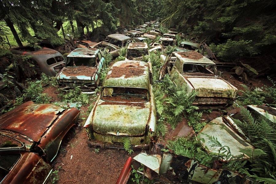 """Nghĩa địa xe làng Chatillon (Bỉ): """"Bãi xe ma"""" bí hiểm nhất thế giới được tìm thấy trong một khu rừng gần làng Chatillon, phía nam nước Bỉ. Đến nơi đây, du khách có cảm giác như lạc vào một khung cảnh hoang vắng, ma mị trong bộ phim kinh dị nào đó. Hàng trăm chiếc xe hỏng hóc, cũ rỉ và mất nhiều bộ phận đã bị chôn vùi hơn 70 năm. Những chiếc xe đều phủ rêu phong và nhuốm màu thời gian. Ảnh: Cargraveyard."""