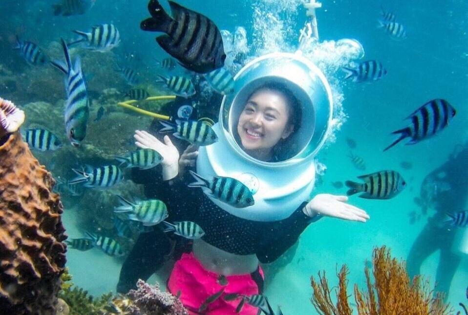 Với hệ sinh thái biển nguyên sơ và đa dạng, bạn đừng quên tham gia hành trình lặn biển thú vị nếu tới Phú Quốc. Chuyến lặn biển sẽ giúp du khách chiêm ngưỡng Phú Quốc ở một góc nhìn khác lạ với các dãy san hô rực rỡ và nhiều sinh vật độc đáo. Bạn có thể lựa chọn lặn biển bằng ống thở, bình dưỡng khí hoặc đi bộ dưới biển với giá khoảng từ 300.000-1,4 triệu đồng. Ảnh: Seaworldvn.