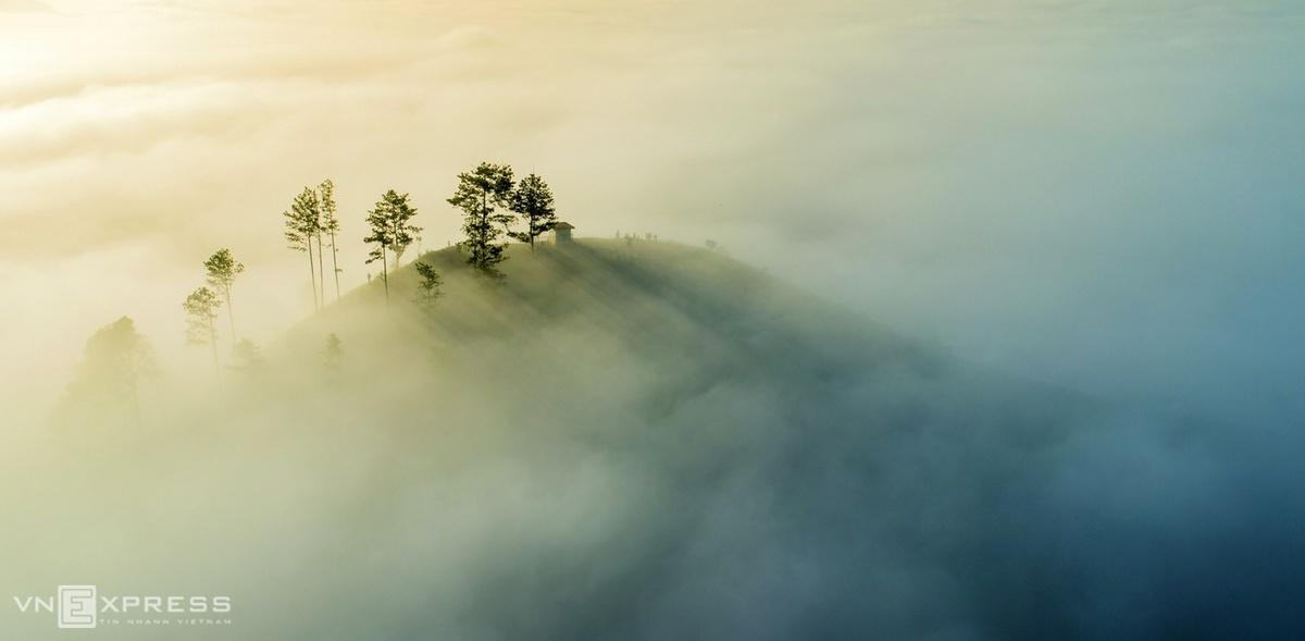 Những cây thông trên đồi ở thung lũng Dasar chìm trong màn sương trắng.