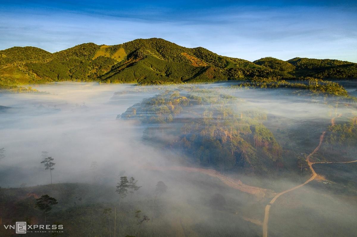 Sương tràn qua hàng thông bên cung đèo K'Long K'Lanh. Đèo này nối liền Đà Lạt - Nha Trang tại địa phận thôn K'Long K'Lanh, huyện Lạc Dương.