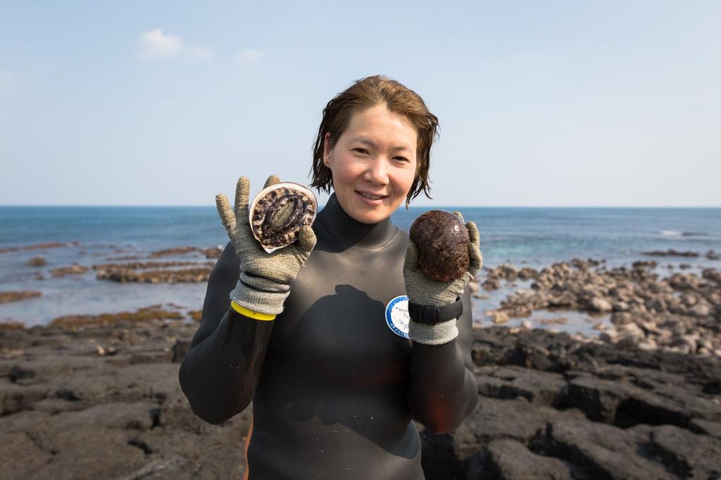 Ô nhiễm môi trường khiến công việc của họ ngày càng khó khăn hơn. Lượng bào ngư cũng sụt giảm mạnh, khiến việc bắt được một con trở thành niềm vui của haenyeo. Ảnh: Roadandkingdoms.