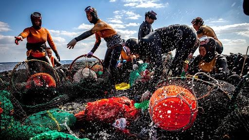 """Lượng bào ngư này một phần đến từ haenyeo, những người được mệnh danh là """"tiên cá ngoài đời thực"""". Suốt nhiều thế kỷ, các phụ nữ này kiếm sống bằng cách cách lặn bắt các sản vật của biển như bào ngư, nhím biển, trai ốc... và bán chúng. Ảnh: Roadandkingdoms."""