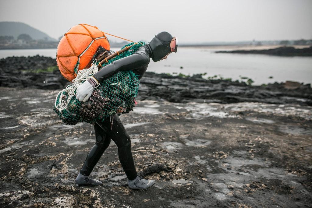 Họ không chỉ kiếm sống mà còn gìn giữ văn hóa truyền thống của đảo Jeju. Đồng thời, việc khai thác đúng mức (không bắt con nhỏ, không bắt vào thời điểm sinh sản) cũng góp phần bảo vệ môi trường. Ảnh: Roadandkingdoms.