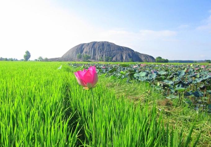 Đồng Nai sở hữu khá nhiều cảnh đẹp mà không phải ai cũng biết. Ngoài những khu du lịch thường được nhắc đến như Bửu Long, Bò Cạp Vàng... thì các hồ nước nhân tạo, đá tảng tự nhiên ở huyện Tân Phú là điểm dã ngoại lý tưởng vào cuối tuần. Khu vực này là vùng miền núi của tỉnh Đồng Nai, thuộc Vườn Quốc gia Cát Tiên đã được UNESCO công nhận là khu dự trữ sinh quyển thế giới.
